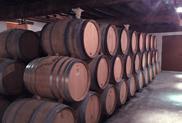 Vineyard Champagne Barrels